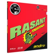 Rasant Powersponge